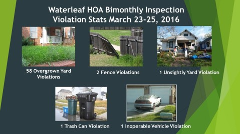 Waterleaf Inspection Violation Stats